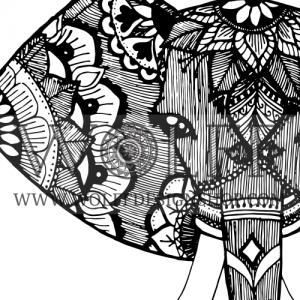 Zoom-elephant